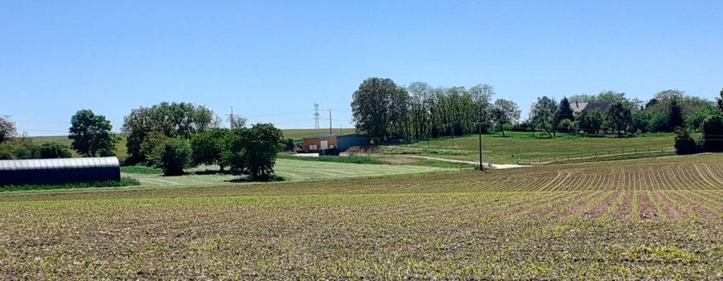 atelier lady mousse dans champs